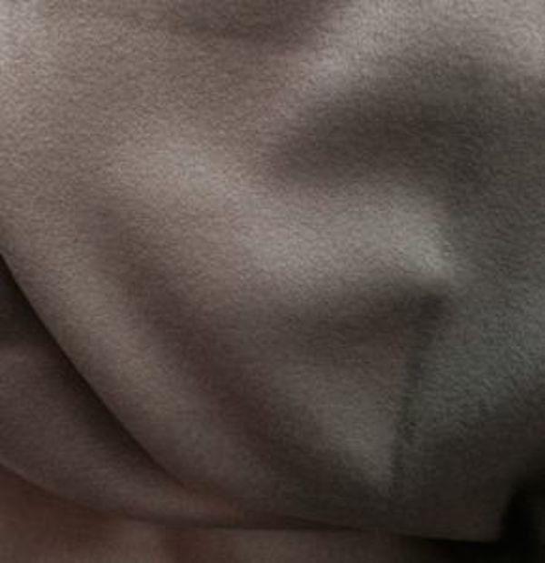 Drap de laine cachemire tissu ameublement taupe
