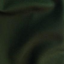 Tissu vert bronze