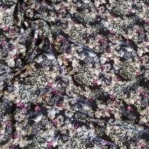 Tissu coton imprimé marine, chemisier