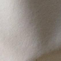 Tissu polyester Suédine blanc, robe